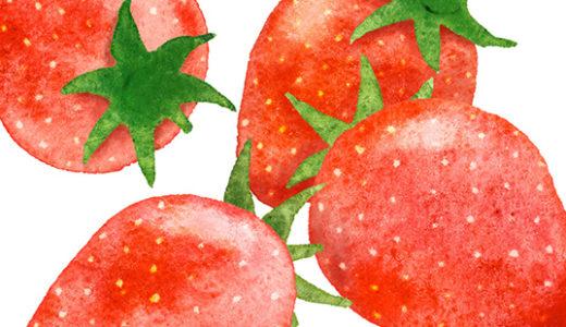 果物のイラスト(画像7点)