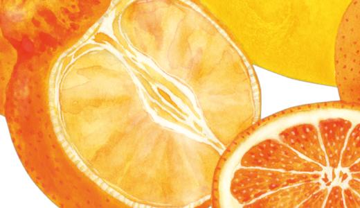 果物のイラスト(画像8点)
